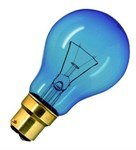 100W Daylight BC GLS bulb