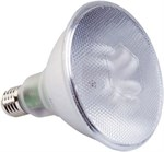 20W ES PAR 38 Energy Saving Reflector Bulb